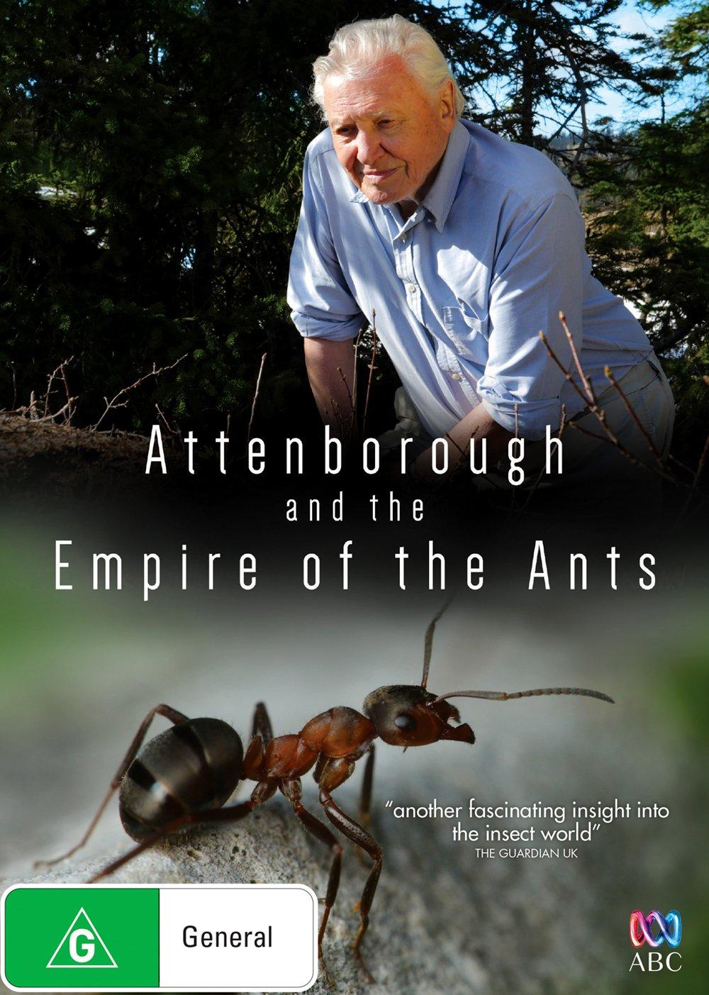 纪录片《蚂蚁帝国》