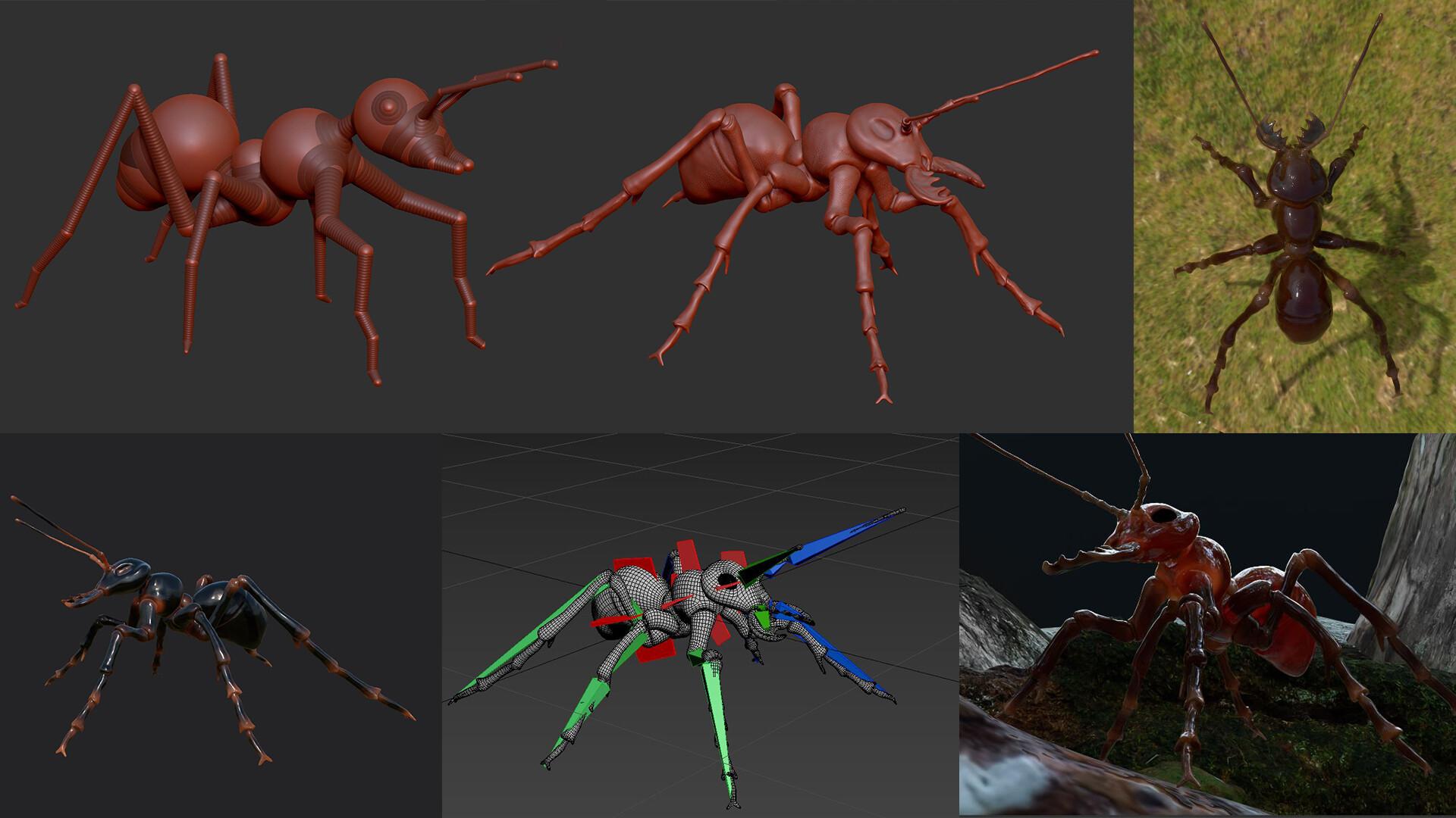 使用ZBrush制作蚂蚁模型-瑞云渲染