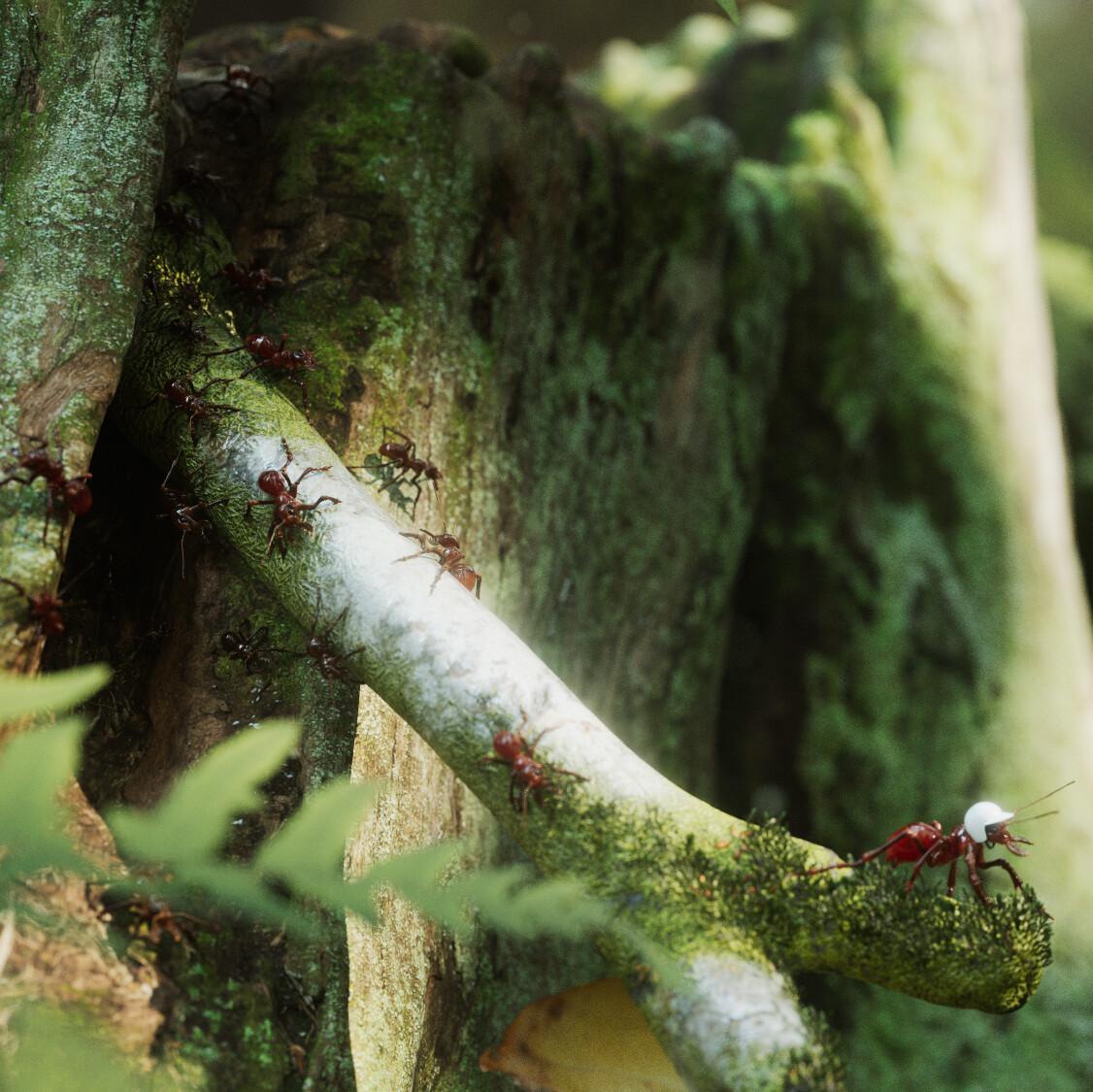 在3ds Max中将叶子苔藓散布在场景中