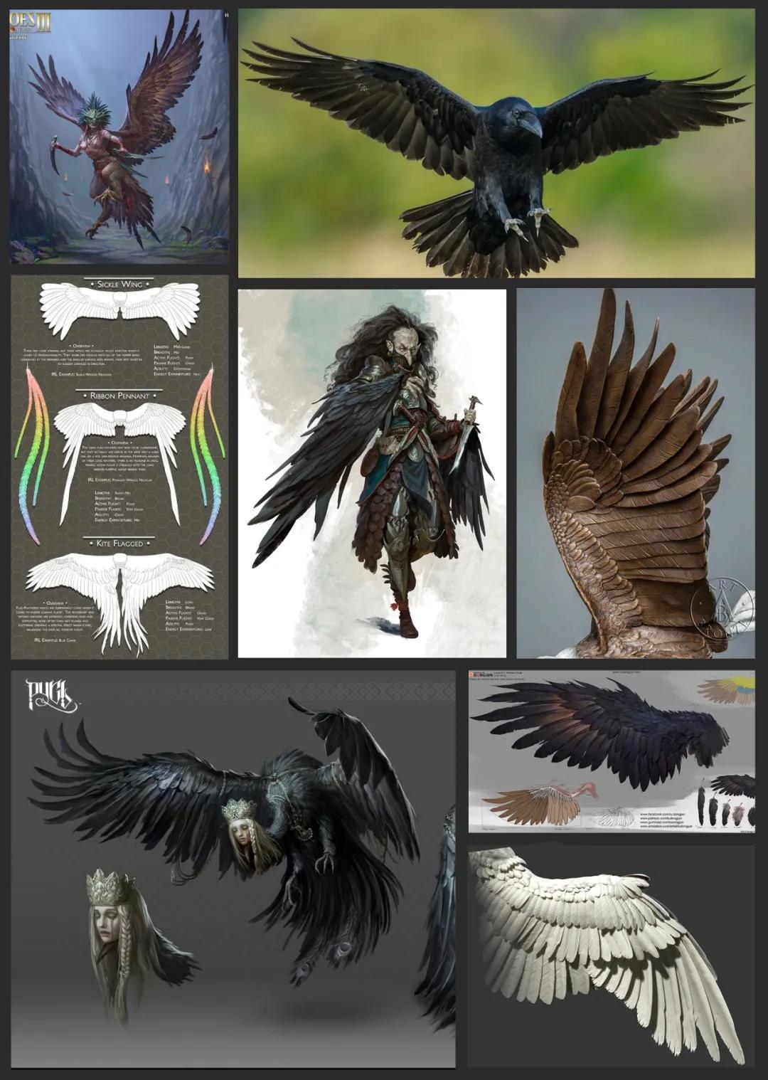 角色翅膀参考资料 - 瑞云渲染
