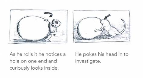 《Meerkat(狐獴)》故事板