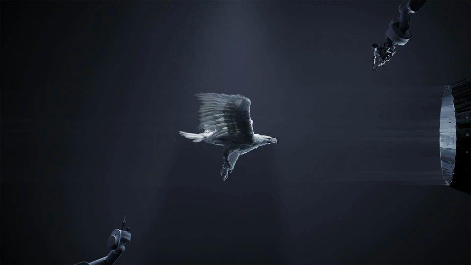 鹰飞过风洞 - 瑞云渲染