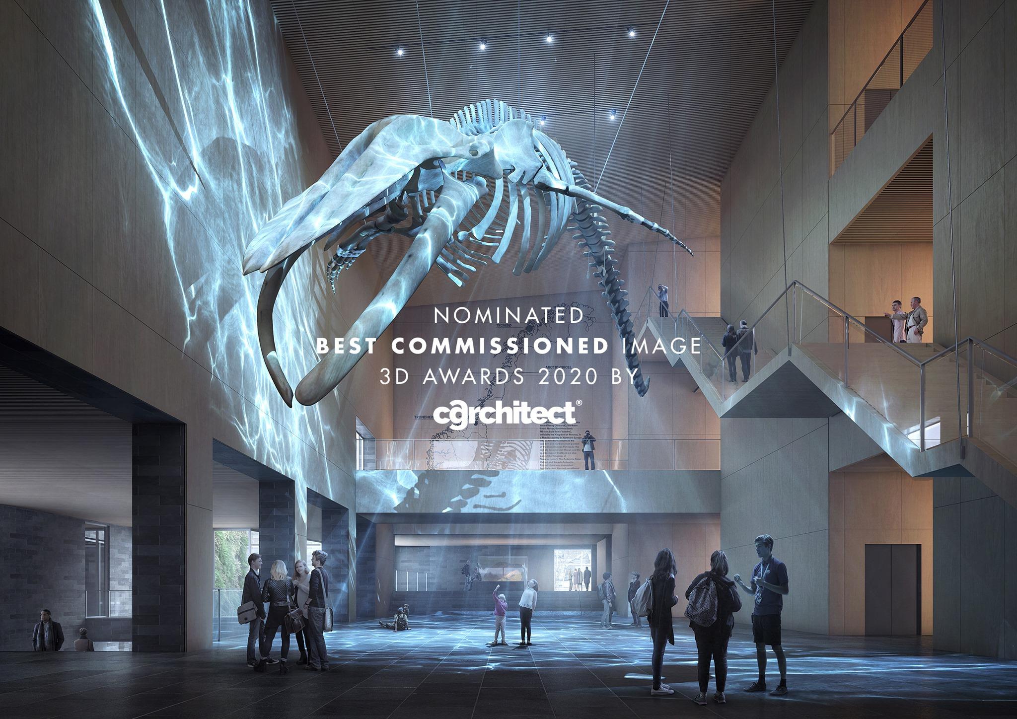 博物馆有着许多展览和研究设施,最大的展厅中悬挂着这个巨大的蓝鲸骨架。